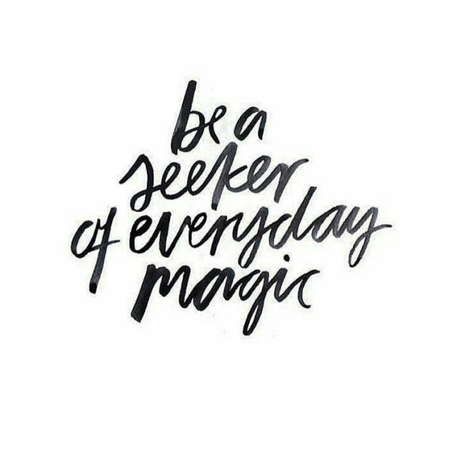 Just saying kleinerotterdammer quote quoteoftheday quotestoliveby magic