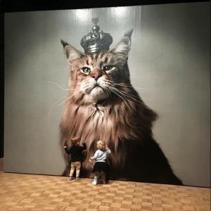 Kerstvakantie en Kattenliefde in de Kunsthal