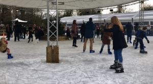 Schaatsbaan IJsvrij Park Festival