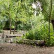 De leukste natuurspeeltuinen van Rotterdam
